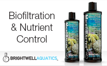 Biofiltration & Nutrtient Control