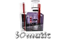 Somatic