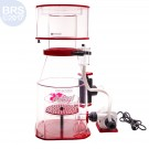 "Regal 250INT 10"" Internal Protein Skimmer (VarioS) - Reef Octopus"