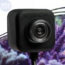 Underwater Reef Cam - IceCap