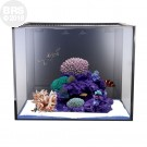 40 NUVO Fusion Mini Aquarium - Tank Only - Innovative Marine