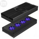 Hydra FiftyTwo HD LED (Black) - Aqua Illumination