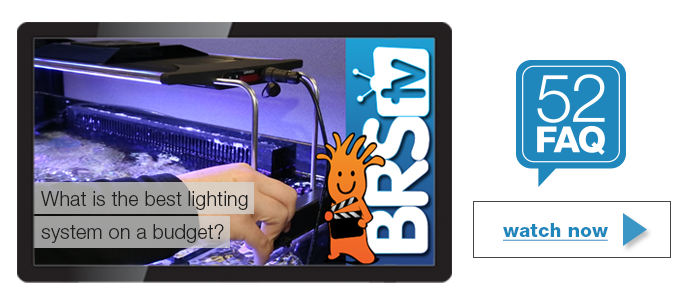 BRStv 52FAQ Budget Lightingg