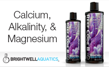 Calcium, Alkalinity & Magnesium