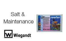 Salt & Maintenance