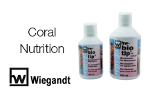 Coral Nutrition