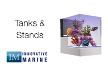 Aquariums & Stands
