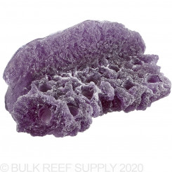 Purple Nano Shelf Magnetic Frag Rack