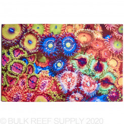 Blue Lagoon Garden Reef Art - 18 in. x 12 in. Canvas Print