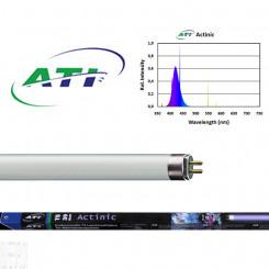 T5 True Actinic 03