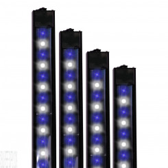 50/50 XHO LED Strip Light