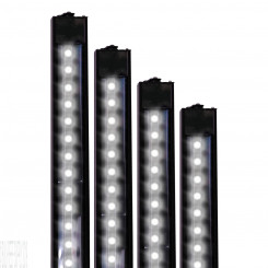 White Daylight XHO LED Strip Light