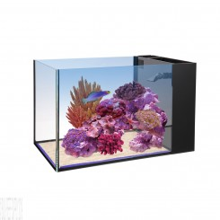 14 Fusion Peninsula Aquarium (Tank Only)