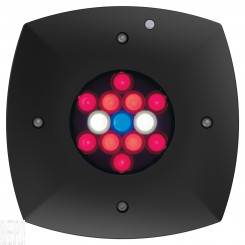 Prime Fuge HD Refugium Light