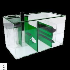 Emerald Sump 26