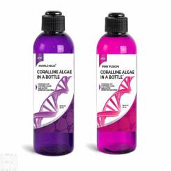 Pink & Purple Live Coralline Algae Kit