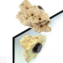 Magnetic Coral Frag Rock Nano