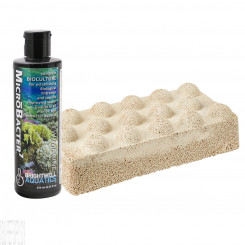 Xport-NO3 Dimpled Brick with 250mL Microbacter7