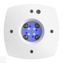 Prime 16 SOL LED Light - White Body