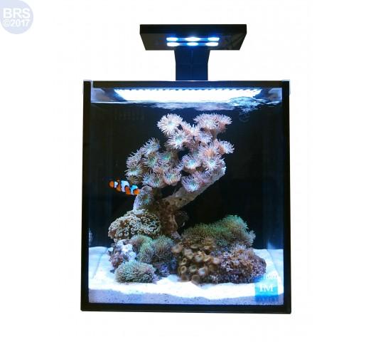 10 NUVO Fusion Aquarium Premium Starter Kit - Innovative Marine Front View