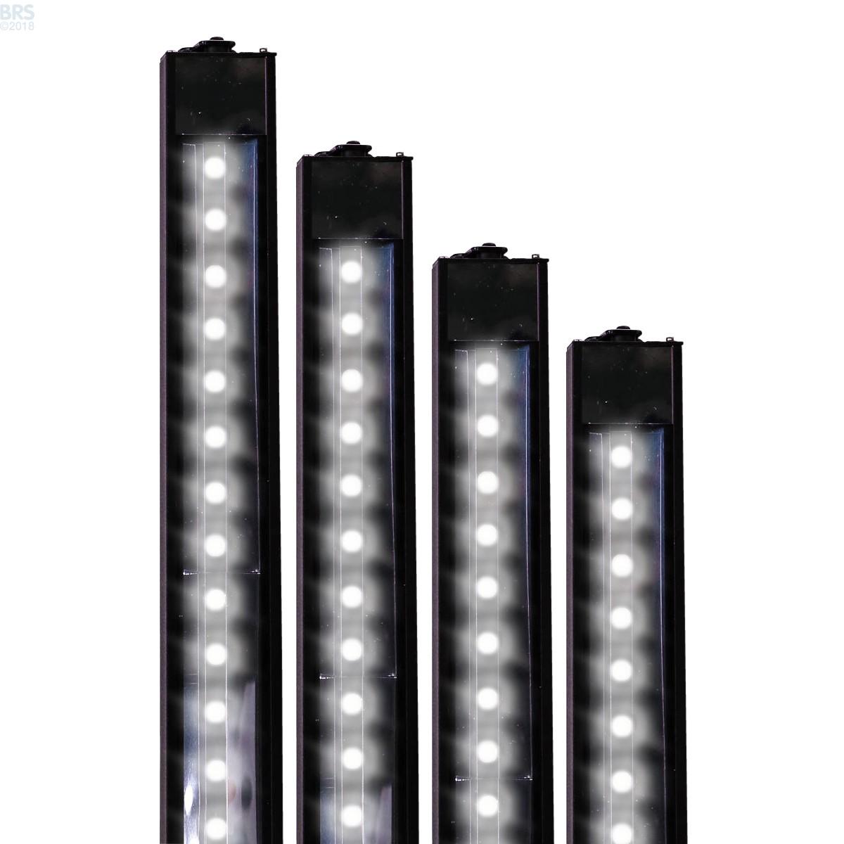 White Daylight Xho Led Strip Light Reef Brite Bulk