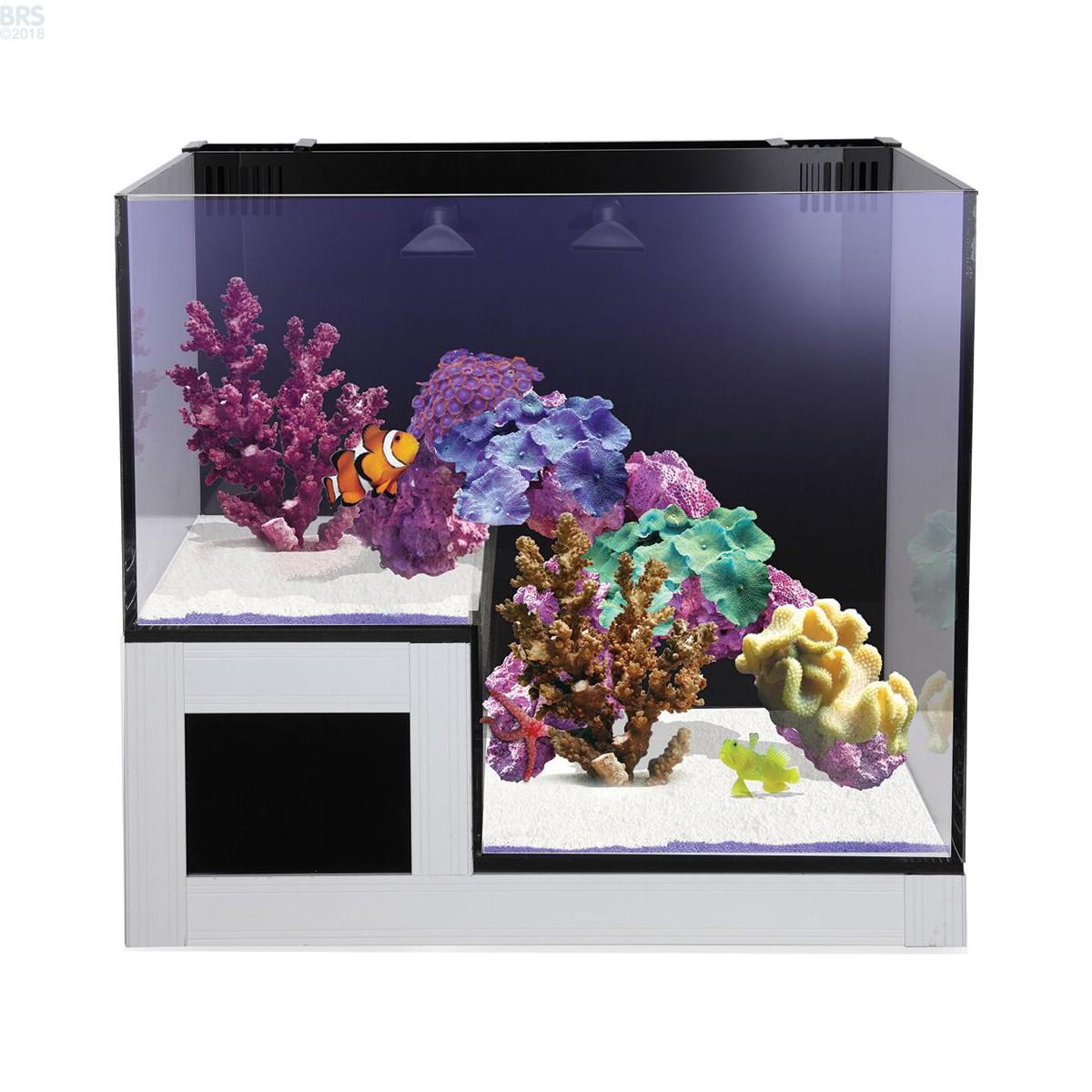Concept Glass Abyss Panorama 20g Aio Aquarium Innovative
