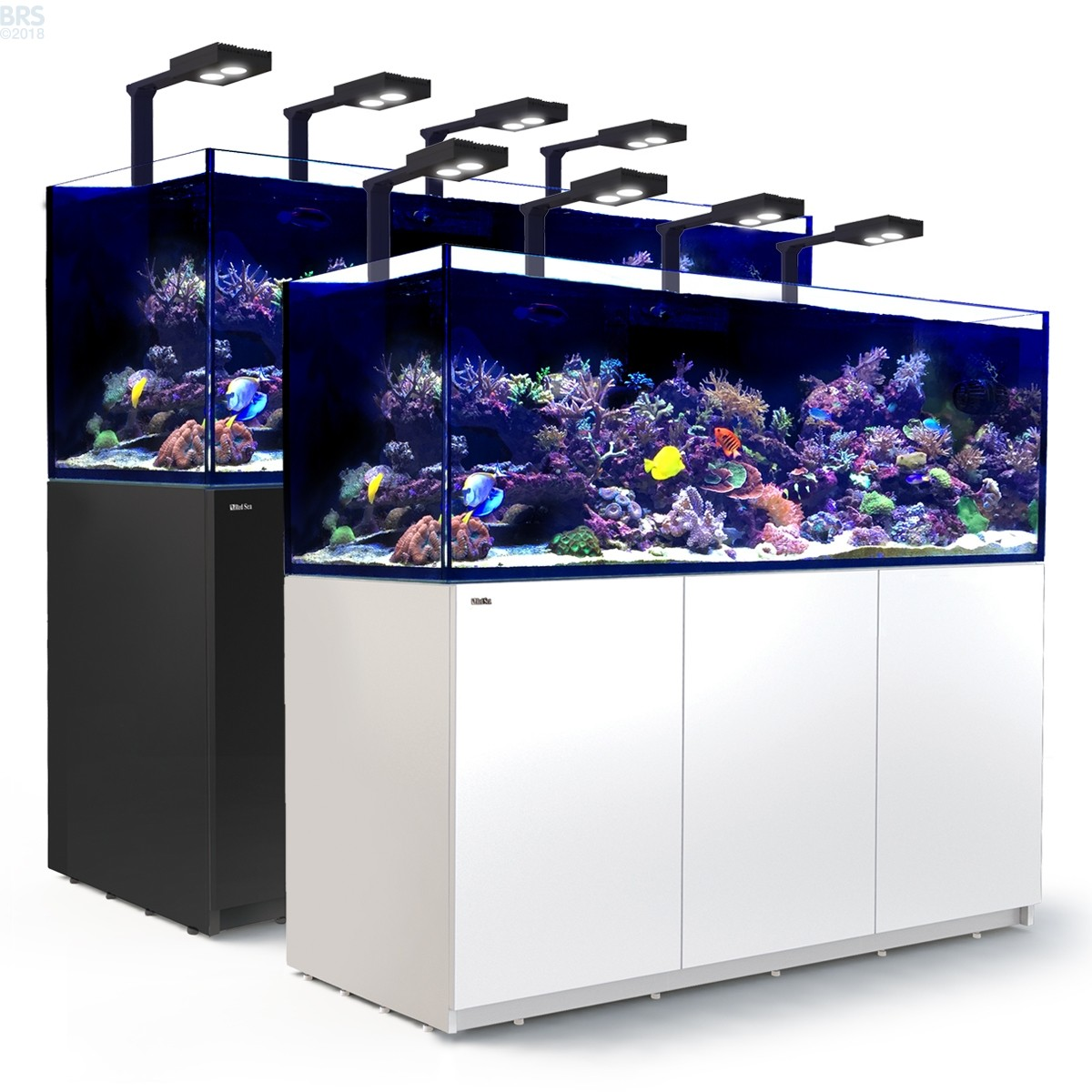 Why does BRS recommend this? The Apex controller is by far one of the most advanced dedicated aquarium controllers on the market today. The wide variety of controllability with the Apex controllers and their easy to use cloud interface makes it a perfect option for a fully automated reef tank.
