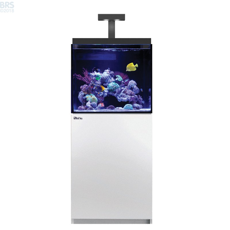 Click on image to zoom  sc 1 st  Bulk Reef Supply & Max E-170 LED Complete Reef System (45 Gal) - Red Sea - Bulk Reef Supply