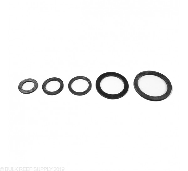 Replacement Gasket for Schedule 80 Bulkhead - Available in 5 Sizes