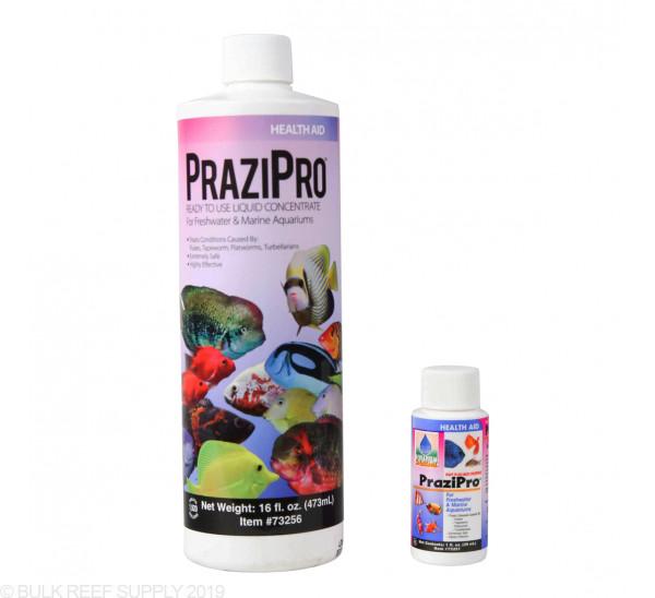 PraziPro Parasite Treatment - Hikari