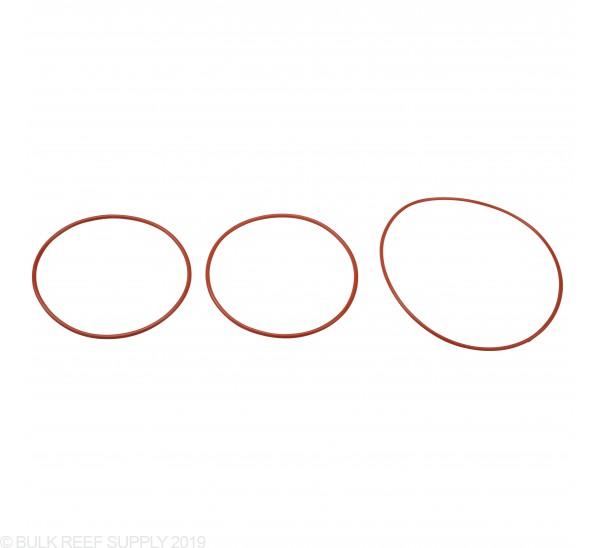 Skimz O-ring Main