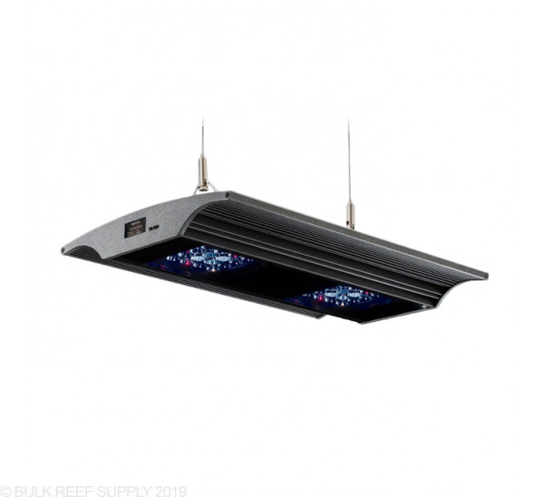 Vervve One LED Fixture