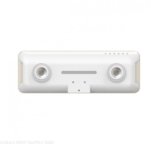 C-Ray 200 LED Light - White