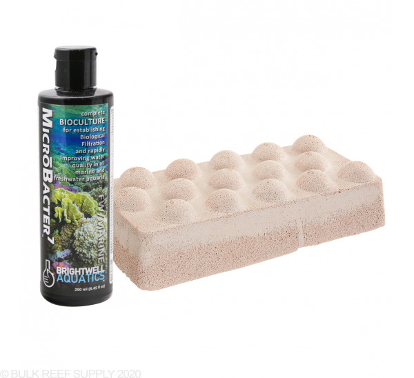 Xport-Bio Dimpled Brick with 250mL Microbacter7 - Brightwell Aquatics