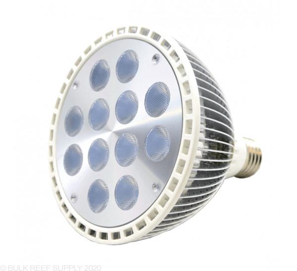 PAR38 Actinic LED Light - RapidLED