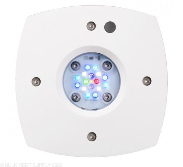 Prime 16 LED Freshwater Light - White Body - Aqua Illumination
