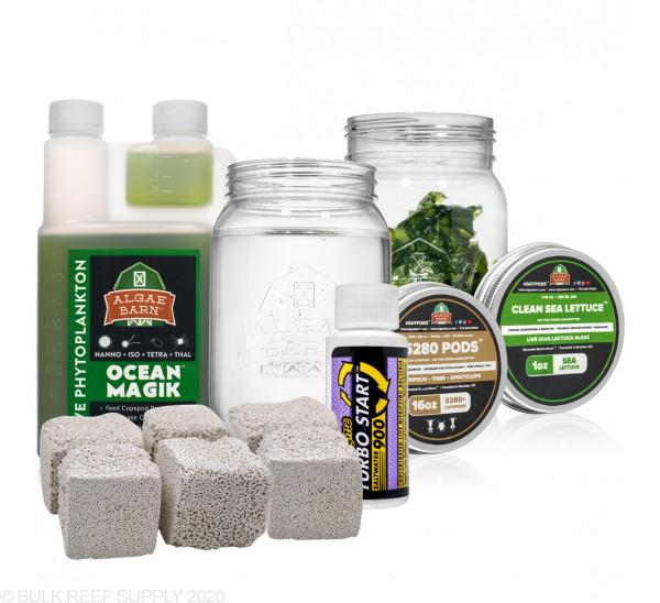 Ultimate Sea Lettuce Refugium Starter Package - AlgaeBarn