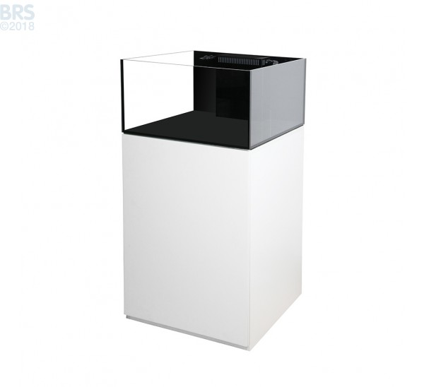 Platinum Frag 45.2 - White