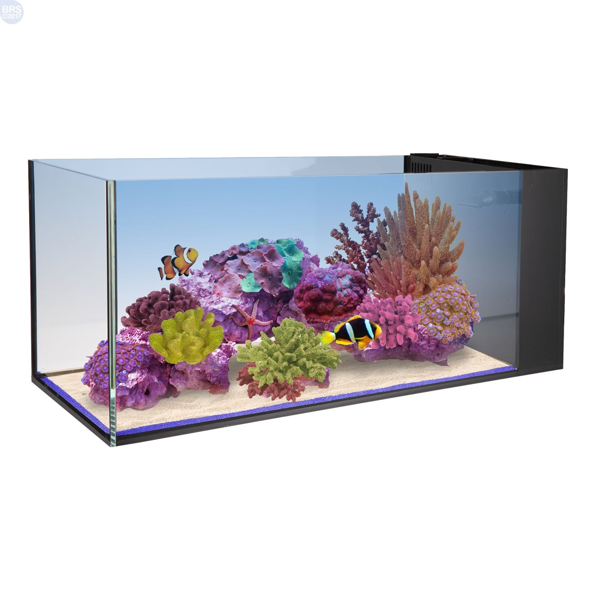 20 Fusion Peninsula Aquarium Tank Only Innovative