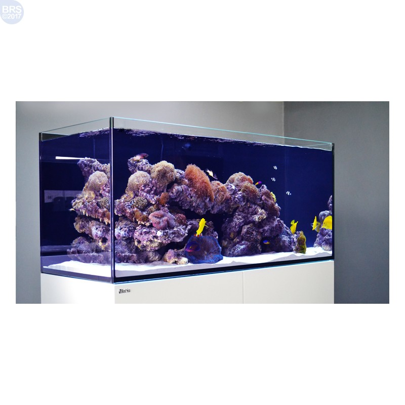 Reefer 350 System 73 Gal Red Sea Aquariums Amp Stands