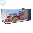 20 Fusion Peninsula Aquarium (Tank Only) - Innovative Marine