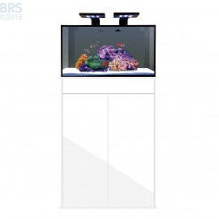 20 NUVO Fusion Tank with SKKYE LED and White Stand - Innovative Marine (discontinued)