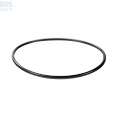 "O-Ring for 20"" Canister (Spartan)"