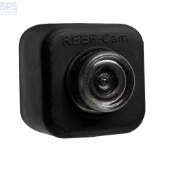 Underwater Reef Cam