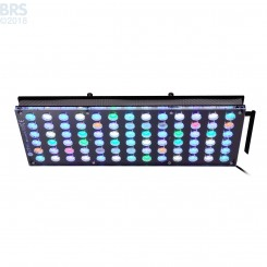 Atlantik V4 (GEN 1) LED Light Fixture