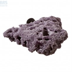 Purple Nano Shelf Single Magnetic Frag Rack