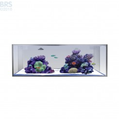 30 NUVO Fusion Micro Long Aquarium (Tank Only) - Innovative Marine