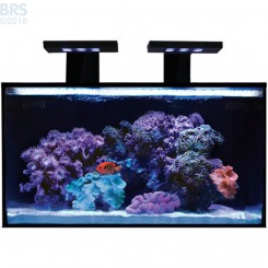 20 NUVO Fusion AIO Aquarium with SKKYE LED Light