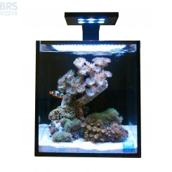 10 NUVO Fusion AIO Aquarium with SKKYE LED Light