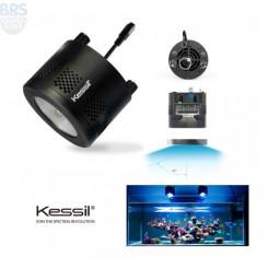 A360W Tuna Blue (In-Store Demo) - Kessil